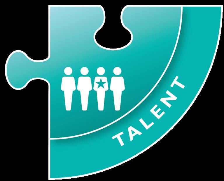 Talent Summit Jigsaw